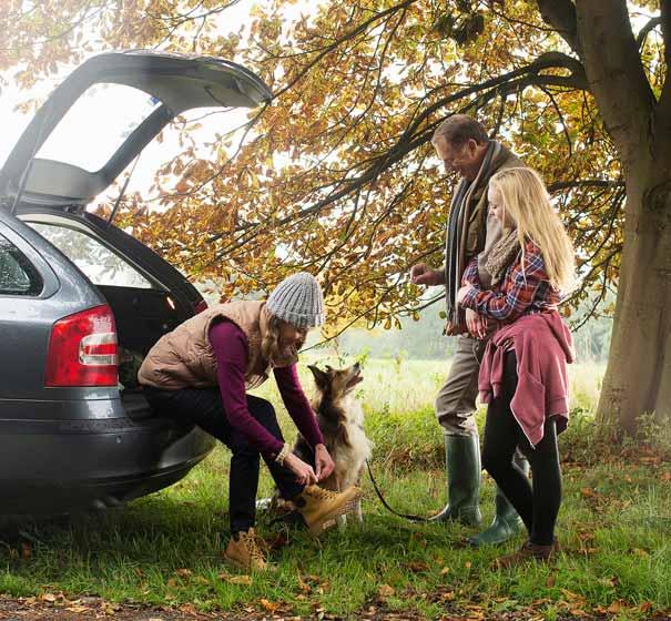 Perro y familia en coches