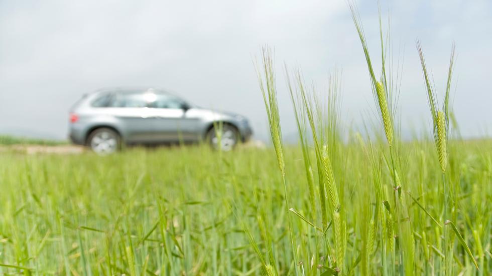 Puede que tu coche se haya fabricado con trigo, soja y/o arroz