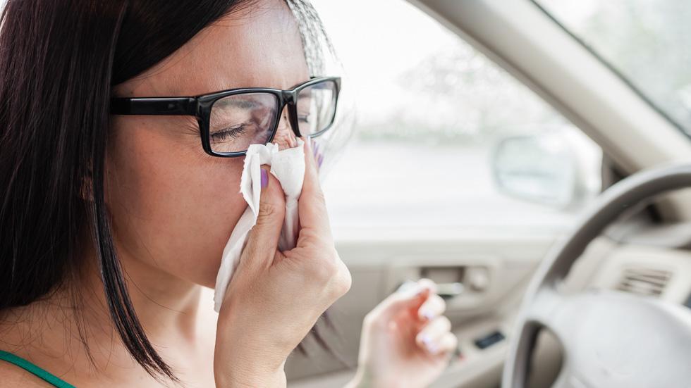 Trucos para que los conductores con alergia conduzcan de forma segura