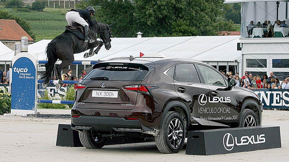 Pasión por los caballos con Lexus
