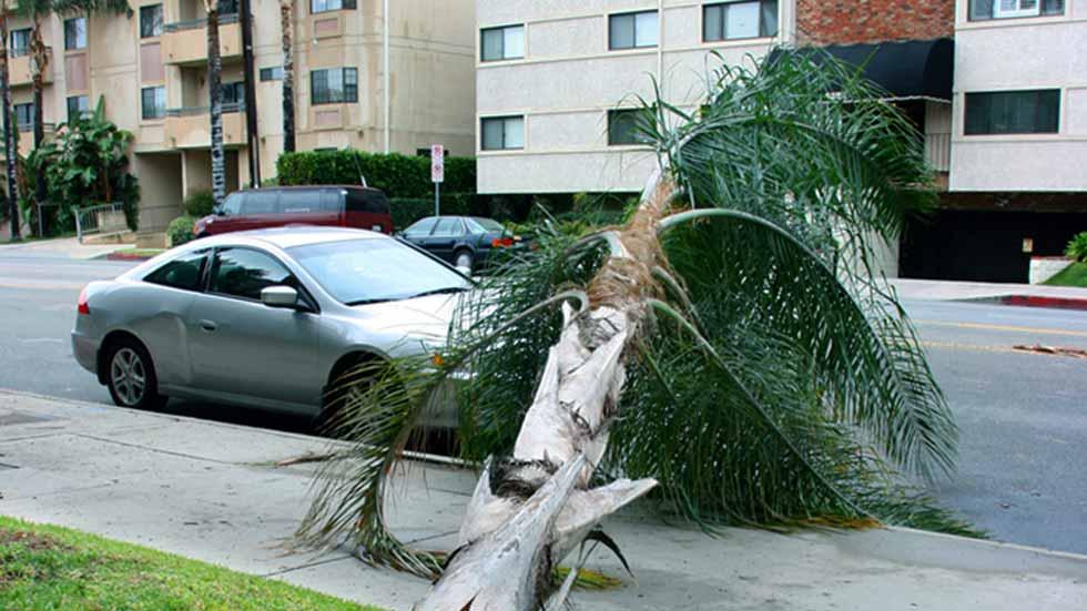 Coches destrozados por lluvias torrenciales o viento: ¿lo cubre el seguro?