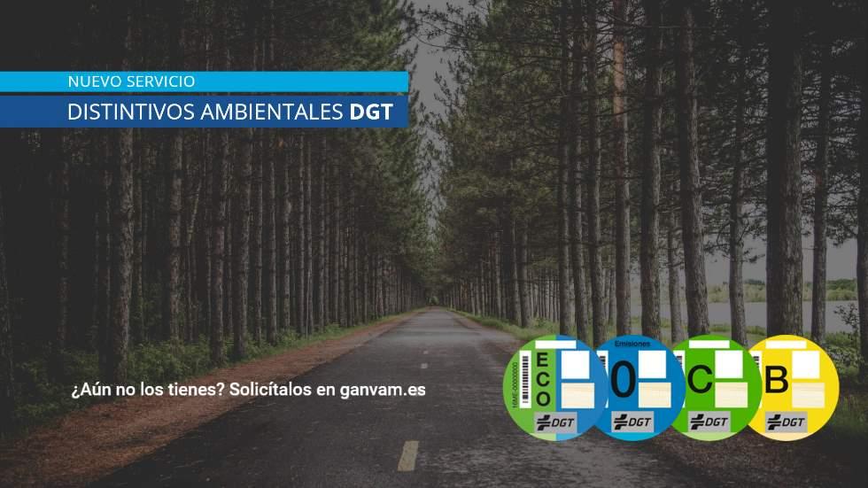 Etiquetas de la DGT: cómo recibir la de tu coche en 48 horas