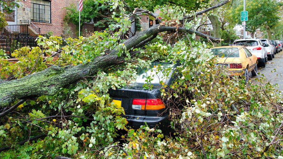 ¿Te cubre el seguro a todo riesgo cualquier situación? Estos 10 casos NO