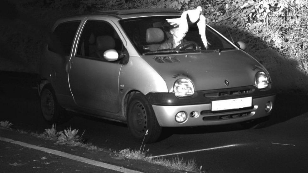 La paloma salvadora: un conductor se libra de 100 € de multa al ocultar su rostro