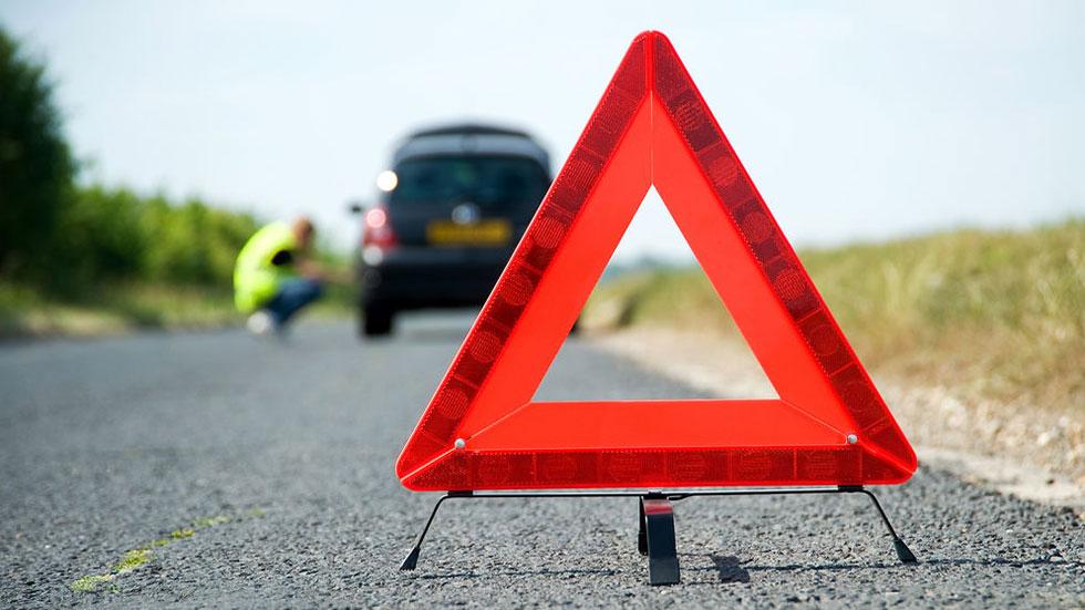 ¿Cubre el seguro de tu coche un accidente o impactos con animales? Lo que tienes que saber