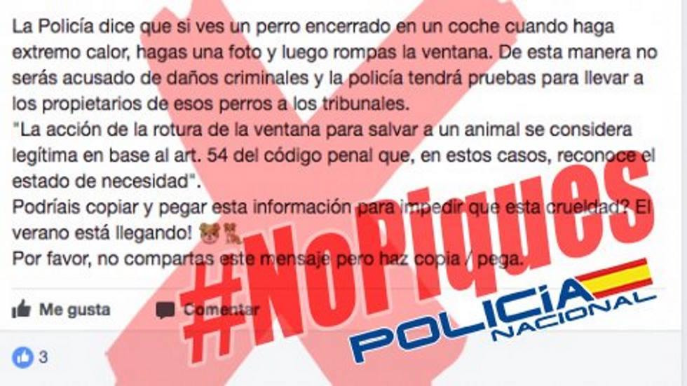 La policía alerta del bulo de los perros encerrados en coches: así hay que actuar