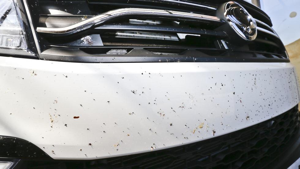 El truco definitivo para quitar los mosquitos de la carrocería de tu coche