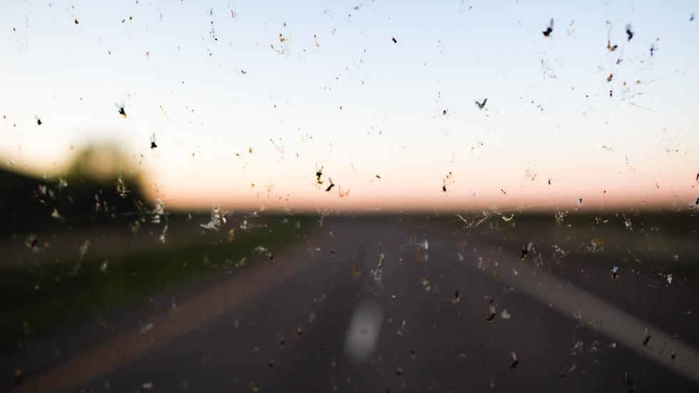 Los mejores consejos para tener siempre los cristales del coche limpios en verano