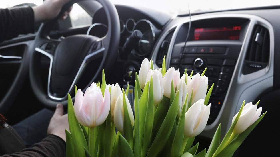10 recomendaciones para conductores con alergia