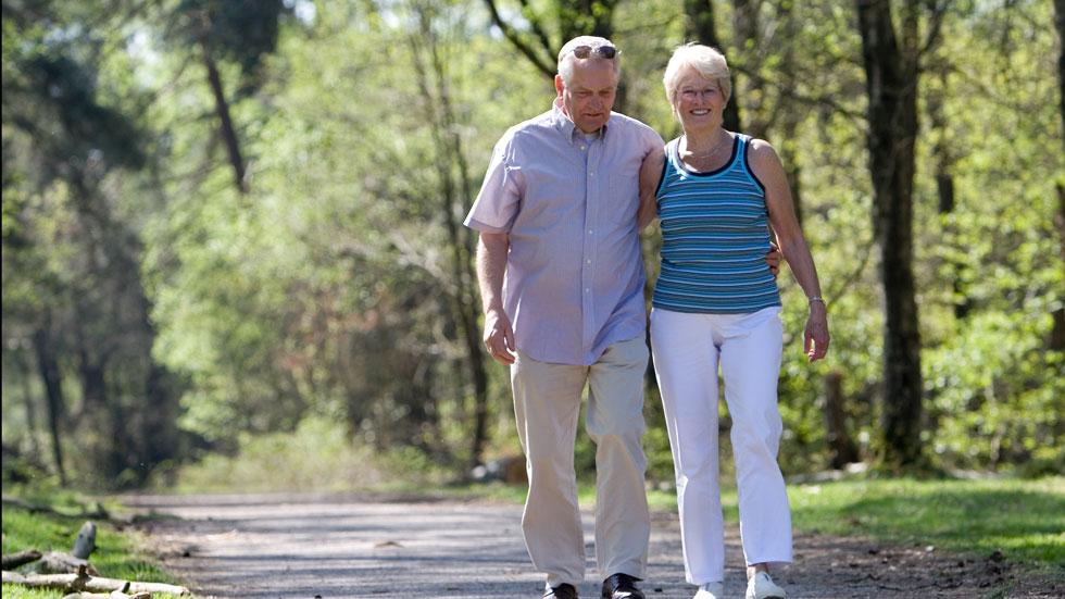 Los ancianos, principales víctimas de los accidentes de tráfico