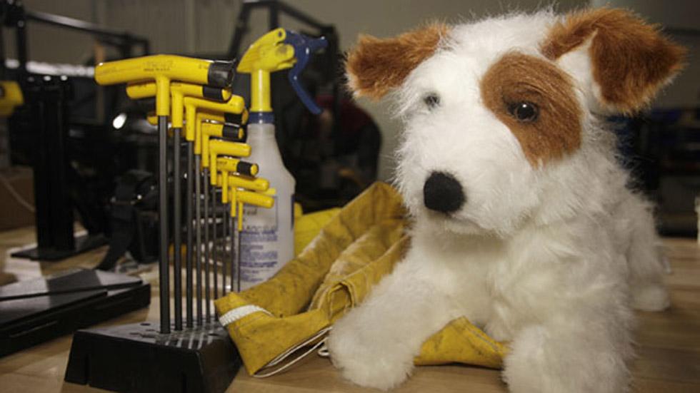 El perro dummy: el salvador de los perros en el coche