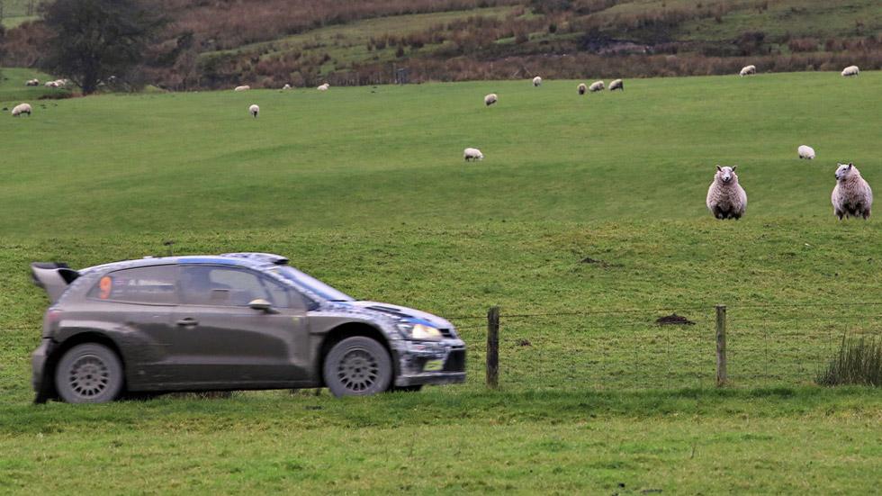 Previo Rallye de Gales – Pelea en el barro