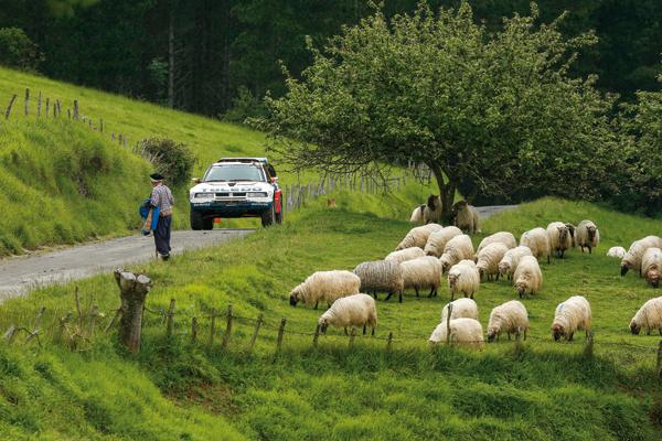 Un pastor de carreras... en AUTOMÓVIL