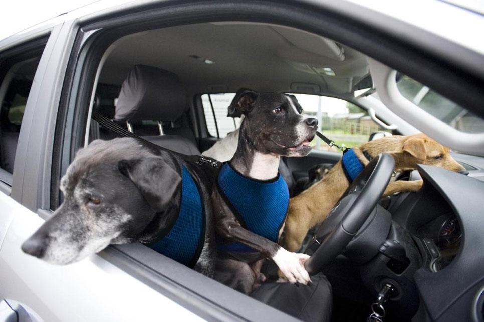 April's Fools Day: las mejores inocentadas de coches