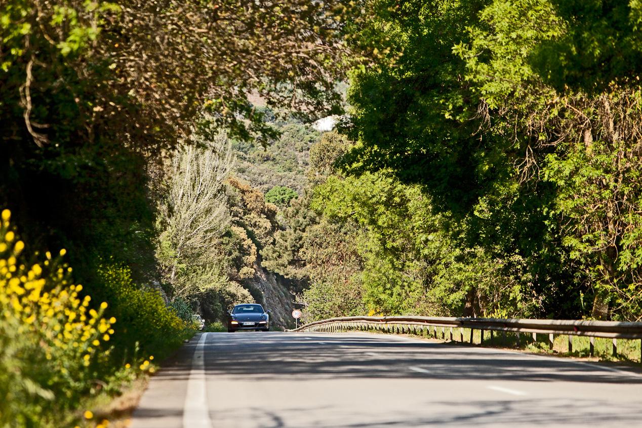 Científicamente, la mejor carretera del mundo
