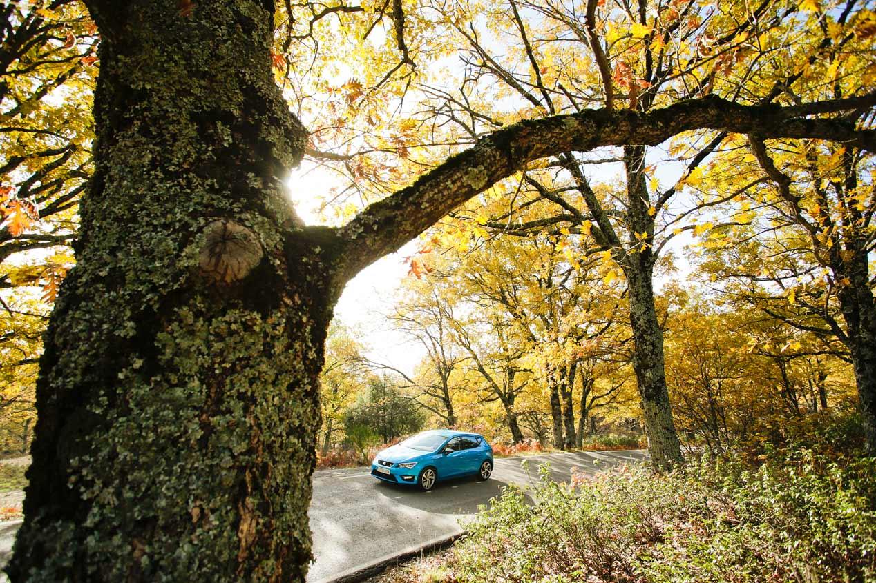 Un coche para todo: Seat León 1.4 TSI 150 CV ACT FR