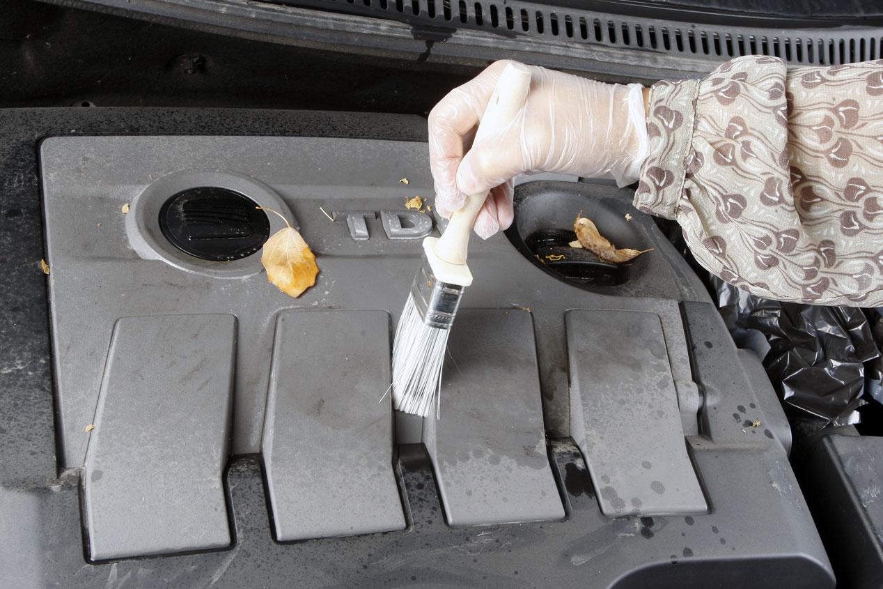 Limpiar el motor