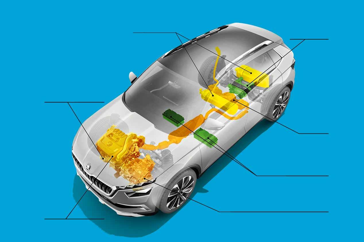 Skoda Vision X: las imágenes definitivas del nuevo SUV