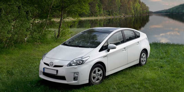 Toyota y la reforestación