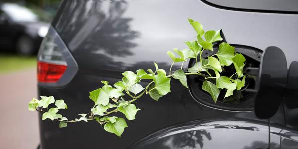 ¿Cuánto contamina tu coche de empresa?