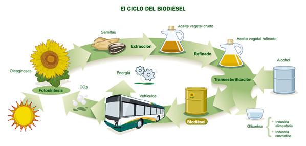 Brasil: 14.000 millones de dólares en biodiésel