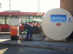ONU: cuidado con los biocombustibles