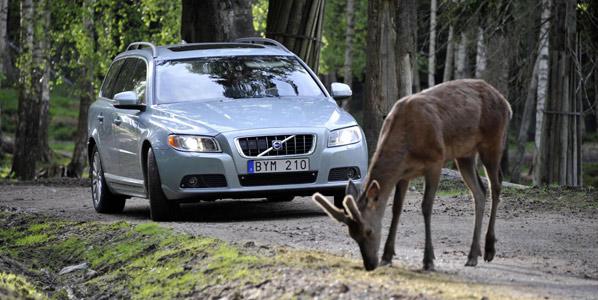 Los nuevos salvavidas de Volvo