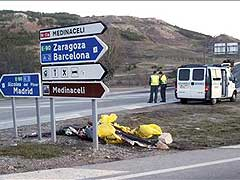 Mueren 25 personas en las carreteras