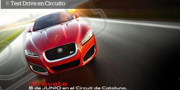 Te invitamos a probar un Jaguar en circuito