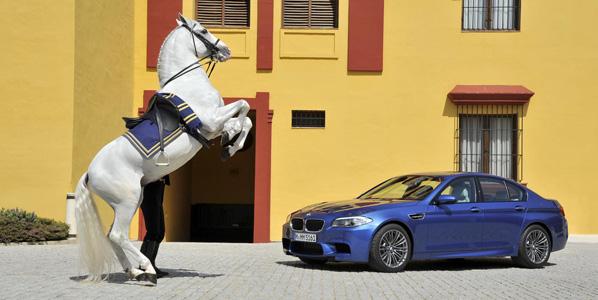 Los mejores coches de 2011